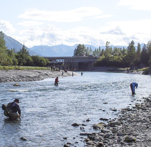 An image of the Anchorage Fishing Guides at Outgoing Angling at a salmon camp outside Anchorage.