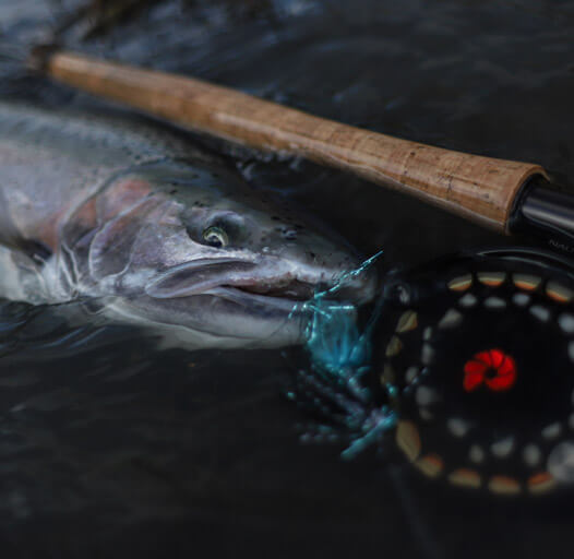 An image of fly fishing on the Kenai river.
