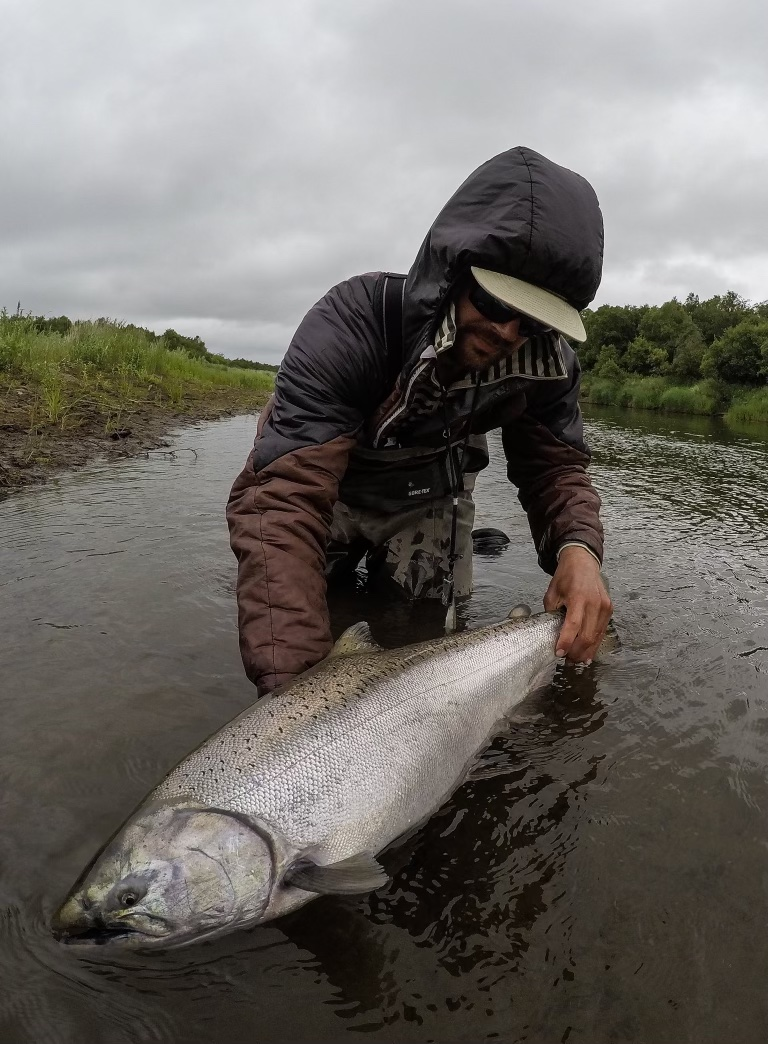 king salmon fishing